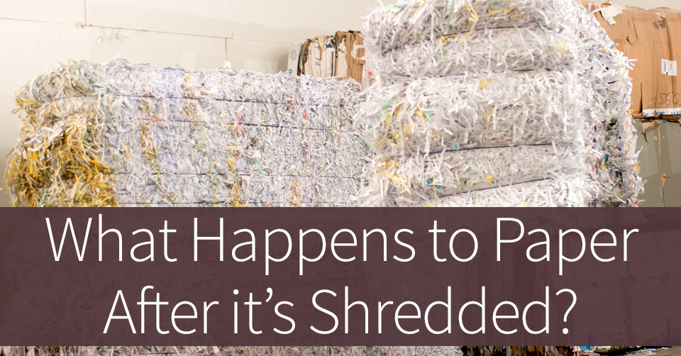 what happens to paper after its shredded